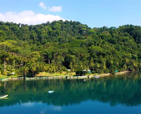 Osa Peninsula Costa Rica Biodiversity